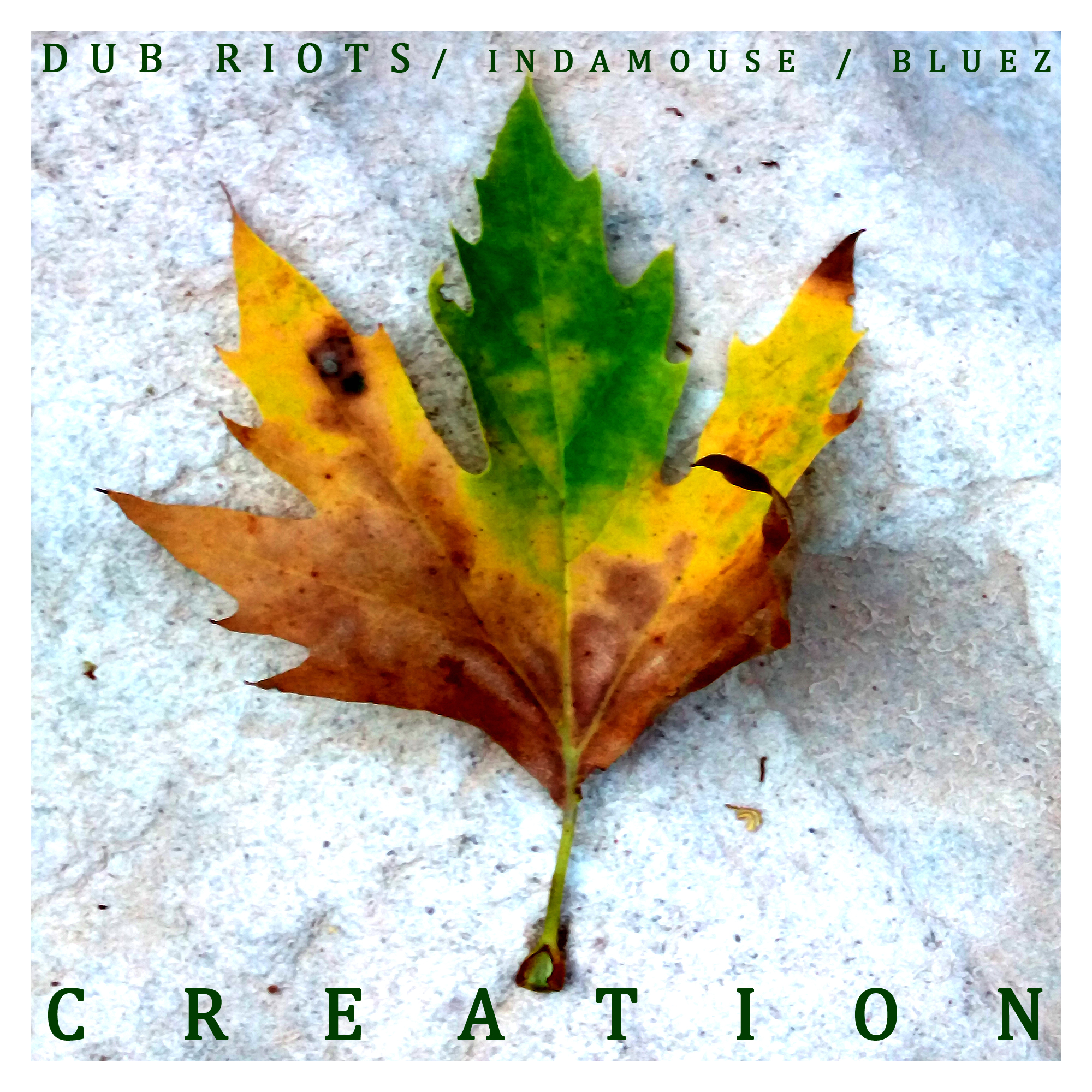 Dub Riots & Indamouse ft. Bluez – Creation
