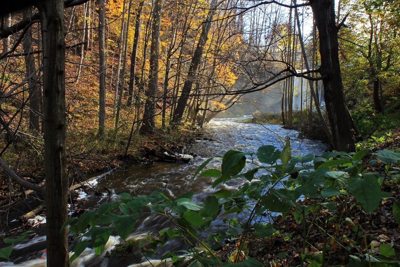 Wolcott Creek in Wayne County (photo)