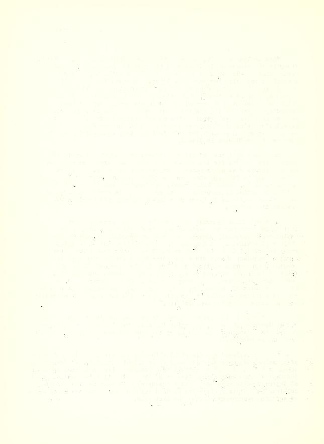 Leaf0242_s4
